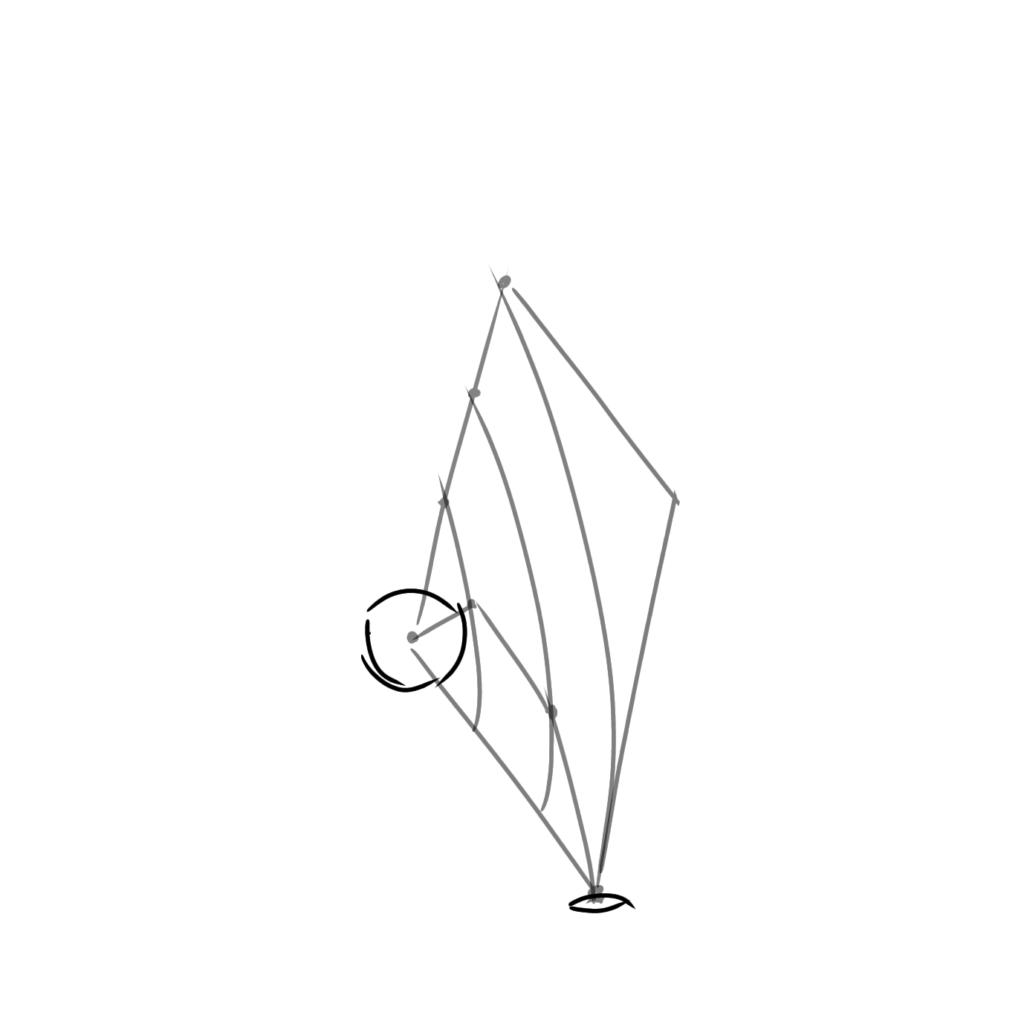 根本と指先の断面を描く
