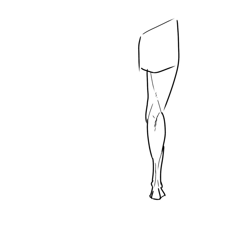 脚の生え方に注意して描く