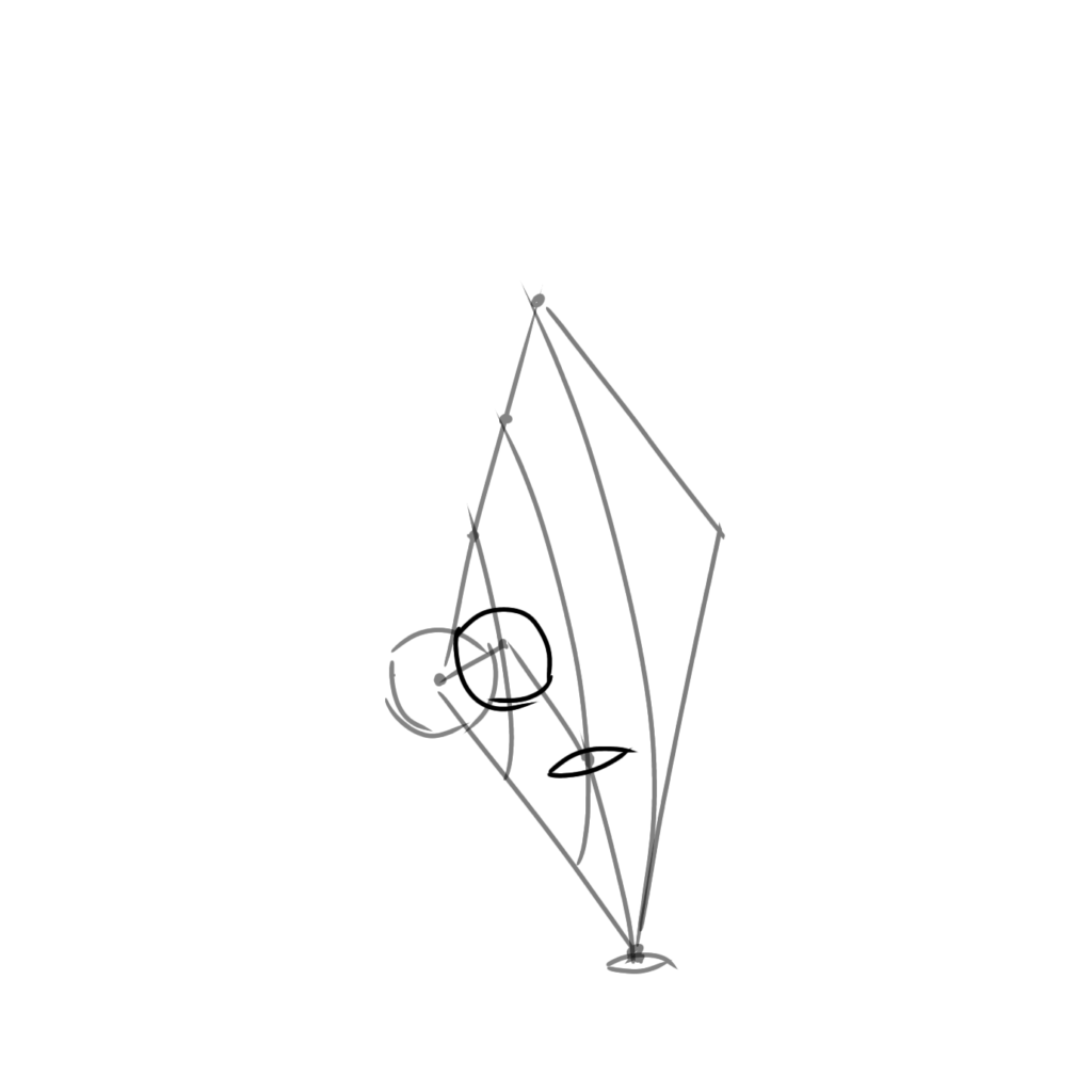 第1関節と第2関節にそれぞれ平行の断面を描く